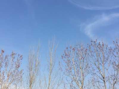 偶尔抬头看看天空 看看天空语录